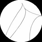 shawl_lapel